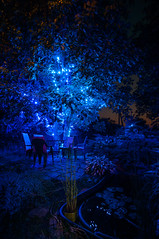 Blue relaxation (Kochum) Tags: nikon d90 sigma1020 1020 night light blue tree chairs table         relax ralaxation