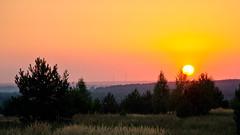 august evening (greenledd) Tags: nikon d5100 penza   kashtanovka sunset sky summer outdoor landscape orange