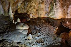 Underground life I (RafalZych) Tags: bear cave jaskinia niedwiedzia niedzwiedzia color underground stalaktyty stalagmity stalaktyt stalagmit forms rocks lake under earth x100 fuji fujifilm speleo speleology kletno polska poland flickrtravelaward
