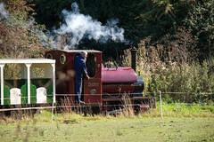 IMG_3273 (Hampton & Kempton Waterworks Railway.) Tags: darent devon arrives loop