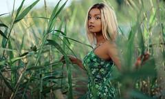 Cornfield (Cyjinx) Tags: portrait 2016 fashion female cornfield people paul pour