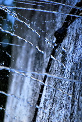 Drops (hannah_bergmann) Tags: water drops tropfen wassertropfen beautiful nikon nikond60 art