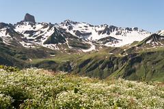 28062016-DSC_3847 (Nico-Bel) Tags: mountain montagne pierra menta alpes alps france paysage landscape