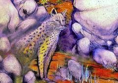 Camouflage (Rob Goldstein -Thanks for your support) Tags: urbanart urbex muralart graffitiart sanfrancisco color colorful canon california robgoldstein raw streetart streetshots saturation artbyrobgoldstein blogging blogger art artederua foto best awesome