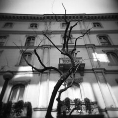 Milano (Valt3r Rav3ra - DEVOted!) Tags: lomo lomography holga holgacfn toycamera plasticcamera milano medioformato film ilfordfp4 bw biancoenero blackandwhite valt3r valterravera visioniurbane urbanvisions streetphotography street 120 6x6
