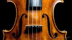 Violin (Danny Lamontagne) Tags: music instrument art violin violon noiretblanc blackandwhite color wood cord musique
