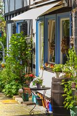 GartenIdyll (tina djebel) Tags: badhomburg stadt garten garden city nikon d7000 dslr hessen deutschland