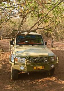 Namibia Dangerous Game Safari - Caprivi Strip 84