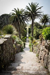 Abbey Garden, Tresco (toschi) Tags: tresco islesofscilly england cornwall uk