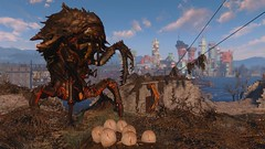 Fallout4 - Queen of The Castle (tend2it) Tags: fallout4 fallout 4 rpg game pc ps4 xbox screenshot screenarchery reshade postprocessing injector nuclear apocalyptic future mirelurk queen castle minutemen