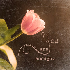 You Are Enough... (Denise @ New Mercies I See) Tags: light textures tulip processing challenge onblack magictexture kimklassen beyondlayers