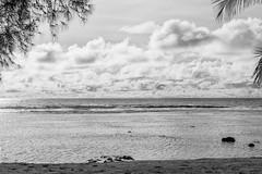 C500D-IMG_4125-PR Canon EOS 500D Rarotonga The Cook Islands (Nic (Luckypenguin)) Tags: world travel vacation blackandwhite bw holiday tourism monochrome monocromo noiretblanc cookislands rarotonga pacificislands canondigitalcamera travelphotography canoncamera travelphotos monocromatico canonef canonefs1755mmf28isusm thecookislands canoneos500d luckypenguin canonrebelt1i cookislandshoneymoon