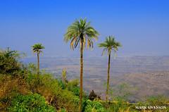 Fort Sinhagad (mswan777) Tags: sky india mountain nature landscape nikon fort maharashtra pune