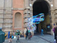 Bologna Bo