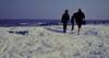 dutch winter (78) (bertknot) Tags: winter dutchwinter dewinter winterinholland winterinthenetherlands hollandsewinter winterinnederlanddutchwinter