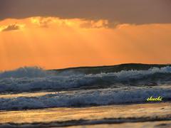 Waves.. (PureClicks) Tags: newzealand waves karekarebeach