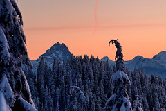 Judge Howay (Christopher J. Morley) Tags: morning trees winter mountain snow sunrise snowshoe dawn nikon bc hike clear ridge explore judge burke overnight wanderung the d600 summerdestination howay kranrod