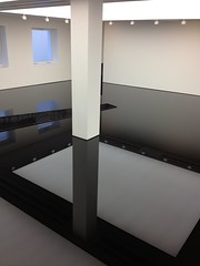 Crude Art (dhcomet) Tags: reflection art square chelsea gallery installation oil saatchi sump sloane 2050 richardwilson
