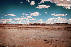 TeePees: Petrified Forest, Arizona