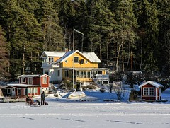 Moving out to the lake in the winter... (Maria_Globetrotter) Tags: schnee winter light sun house snow rot ice sol yellow forest canon island is vinter perfect day sweden stockholm flag schweden swedish skog sverige february icy svj perfekt sn sucia estocolmo gul stoccolma suecia liding archipelago 2012 zweden skrgrd svenska rtt rd sude tukholma ljus  svezia  skrgrden szwecja ruotsi isve 550d istapp 1585 flaggan    in  thy stokholmo thyin   antsulainn mariaglobetrotter