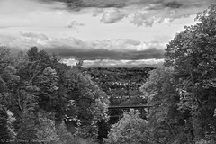 Autumn in B&W (Scottwdw) Tags: cornelluniversity fallfoliage newyork bridge ithaca valley autumn landscape ridge hill trees vacation campus travel nikon d700 scottthomasphotography unitedstates bw blackandwhite yourphototips