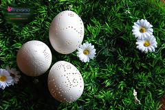 Uova di Pasqua traforate col Dremel - Easter eggs (OltreversoLab) Tags: eggs tutorial dremel pasqua pizzo oeufsdepâques uova huevosdepascua traforo