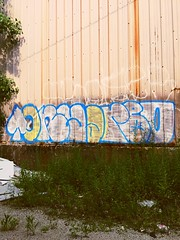 urban jungle in the hood (teelopez) Tags: theurbanjungle abandoned urbandecay chicagograffiti chicago lowerwestside silos damensilos