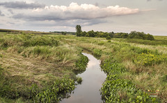 The Creek (SteveFrazierPhotography.com) Tags: fields creek stream water clouds farmland country countryside bardolph mcdonoughcounty illinois il summer august reflections stevefrazierphotography midwest america rural