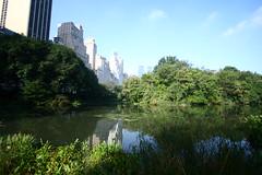 IMG_1060 (Cristian Marchi) Tags: day7 ny nyc america viaggio trip central centralpark park usa skyscrapers skyline