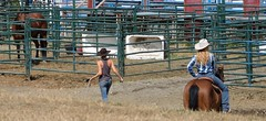 bullpens (joshoowah_007) Tags: horses cowgirl people country jeans equestrian gymkhana hat plaid blond brunette horse