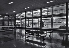 Essendon Airport (phunnyfotos) Tags: phunnyfotos australia victoria vic melbourne interior inside airport essendon essendonairport aviation lounge gatelounge departurelounge seats emptyseats mono bw monotone nikon d750 nikond750 1950 aerodrome airfield window airplane aeroplane aircraft tarmac balcony lino