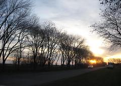 Regreso a casa (leograttoni) Tags: camino rbol tree cielo sky atardecer sunset automvil car airelibre buenosaires