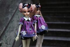 Makale outfits (DaiMorWong) Tags: makale bjd peakswoods littlemonica koonies fob msd slimmsd dim oscareyes