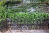 DSC03627 (JIMI_lin) Tags: 中國 china beijing 景山公園 故宮 紫禁城 天安門 天安門廣場