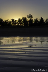 Sunset @ Mosqueiro Beach, Aracaju (Ramesh_Thadani) Tags: aju aracaju atlanticocean brasil brasile brasilien brazil bresil meer mosqueiro mosqueirobeach praiademosqueiro se sergipe strand atlantic atlanticsea beach coco coconut coconutpalmtree coconuttree coqueiro mar oceano oceanoatlantico palmtree palmeira praia sea sunset waves br