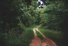 The road to the Old River Plantation (farenough) Tags: abandoned alabama al south rural rurex plantation farm river wander explore photo memory old history