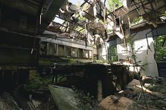 (michaelbrnd) Tags: overgrown abandoned urban exploration urbex nl industries lead pollution superfund