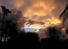 Colorful Atmospherics (zoniedude1) Tags: arizona sunset skyscape stormclouds weather stormyskies colorfulatmospherics phoenix atmosphericobservations sunsetsky thunderstorms valleyofthesun skyshow monsoonsunset evening tstorms sundown sky colorful beauty palmtrees silhouettes azsky monsoonseason view color mybackyard light skyline summer desert backyardsunset phoenixsky southwest nature monsoon2016 canonpowershotg12 pspx8 zoniedude1 earthnaturelife