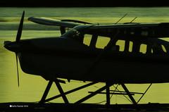 Plane at rest 4846 (kathypaynter.com) Tags: plane planes fly flight floatplane cessna cessnaplane cessnafloatplane sunset sunsetscenery sunsetsillouette campbellriversunset campbellriverscenery thespit atthebeach atthespit estuary campbellriverestuary sillouette