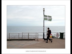 Walking the Dog #1. Teignmouth, South Devon. (Mike Parr) Tags: flag dog walking urban teignmouth devon