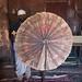 Debre Tsion (aka Abune Abraham) rock-hewn church - monk and ceremonial fan