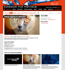Sundance Program Guide, 2013 - Catnip: Egress to Oblivion?