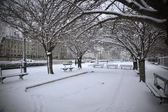 Paris sous la neige (CedEm photographies) Tags: winter snow paris france weather hiver neige quaideseine intemperies nikond700