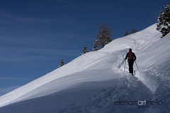 Dolomiti (Elena Martinello) Tags: trees winter snow man pine forest landscape person persona track foto view path powder backpack neve pow zaino inverno birra snowshoes dolomiti gettyimages bosco ragazzo photooftheday ciaspole salewa dynafit gettyimagesitalyq1 gettyimagesitalyq2 gettyimagesitalyq3
