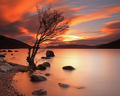 Lone Tree at Sunset. (Gordie Broon.) Tags: winter light sunset nature water clouds landscape geotagged photography scotland bravo scenery rocks alba scenic escocia hills explore le lochness inverness lonetree schottland ecosse invernessshire scozia stonybeach scottishhighlands dores foyers greatglen meallfuarmhonaidh inverfarigaig bwnd110 canoneos7d canon1755mmlens lee09grad gordiebroon kurtpeiserexcellence