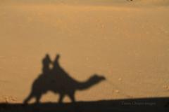 IMG_4767 (Tarun Chopra) Tags: travel india canon photography gurgaon rajasthan touristattractions indiatravelphotography rajasthaninwinters gurugram
