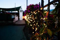 DSC_1004 (edu256) Tags: light sky plants flower nature beauty hotel leaf guatemala antigua d3100