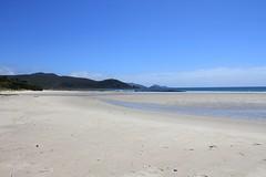 Sisters Beach (2)