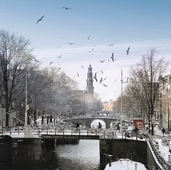A view into the heart of wintry Amsterdam (Bn) Tags: world street trees windows winter light sunset people seagulls house snow cold holland heritage church water netherlands dutch amsterdam weather bike corner walking frank anne boat canal cozy cool topf50 colorful jan snowy walk seagull bikes atmosphere scooter file canals unesco prinsengracht snowfall sled topf100 mokum rembrandt meeuw meeuwen gezellig cafs jordaan sleding slee bycicle westertoren brouwersgracht nowandthen pakhuis lange westerkerk wester celcius grachtengordel houttuinen rondvaartboot 1000km 100faves 50faves haarlemmer 1c lekkersluis geefmijmaaramsterdam enhoornsluis