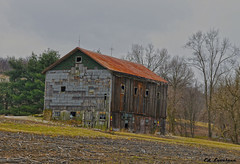 Old Barn In Venitia Pennsylvania (The Lovelace Photography) Tags: photographyforrecreation rememberthatmomentlevel1 rememberthatmomentlevel2 bestevercompetitiongroup creativephotocafe